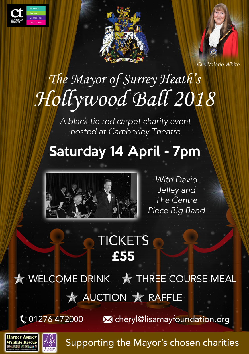 Mayor's Ball 2018 Email poster